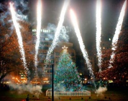 Boston area Christmas Tree lighting schedule for next week.